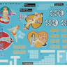 "Foxbot 48-020 Douglas A-20 Boston ""Pin-Up Nose Art and Stencils"" Part # 2 1/48"